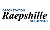 Opfokstation Raepshille